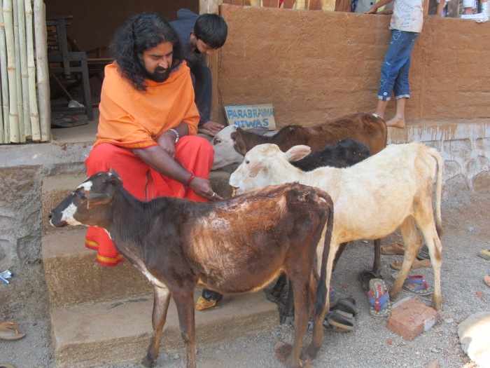 Mohanji's love for animals