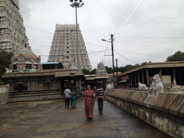 Amma before entering the Temple