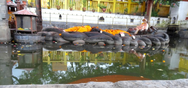 10-miracle-photo-buddha-nilkanth-reflecting-in-the-water-180-degrees-below-himself