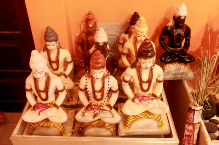Merudanda ashram 2