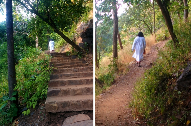 Mohanji along the way