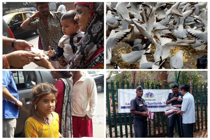 Mumbai - Ammucare - Mohanji happy birthday- aanandan (0)