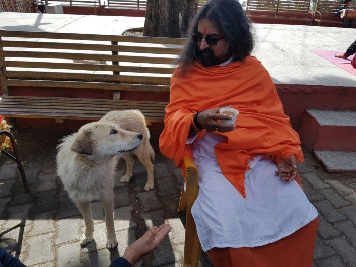 mohansuniverse - Mohanji - Mohanji and the Nath master posing as a dog