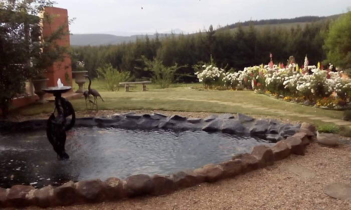 Mohanji Chronicles Blog - Timeless Leelas - The beautiful pond at the beautiful KwaZulu Midlands during the Calderwell Retreat