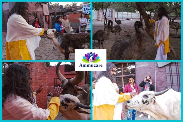 Ammucare - Delhi - charity - Happy birthday Mohanji -