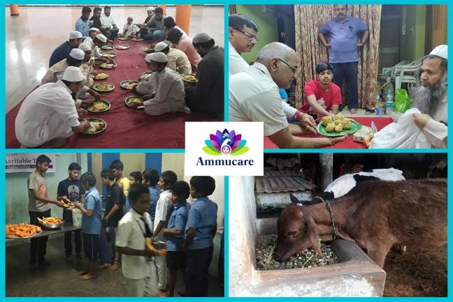Ammucare - Hyderabad day 5- Happy birthday Mohanji -