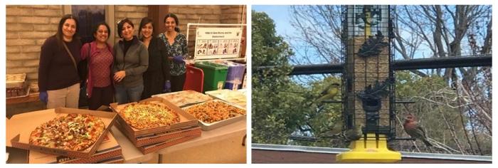 USA - Happy birthday Mohanji - feeding birds in California and pizza distribution