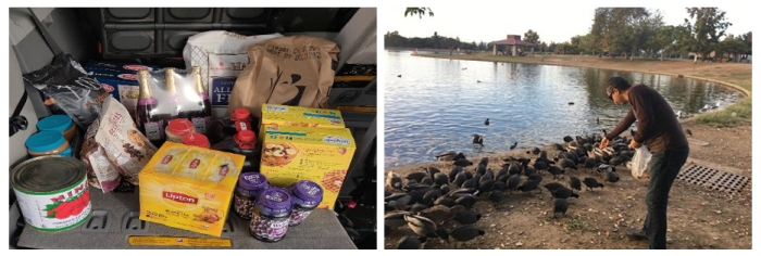 USA - Happy birthday Mohanji - Los Angeles, New York, New Jersey - feeding birds and food distribution