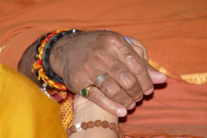 A Royal Vision_Mohanji the eternal companion