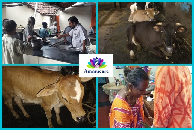 Ammucare - Kerala 2 - Guru Purnima - annaadan