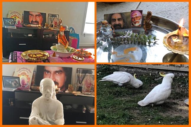 Australia - Guru Purnima 2019 - Singapore - Mohanji - Shirdi Sai Baba