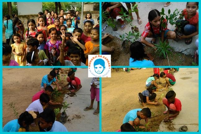 Mohanji ka Aangan - Delhi - planting trees -Guru Purnima 2019