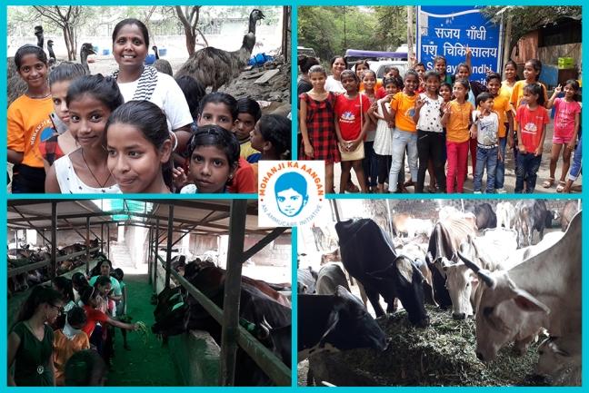 Mohanji ka Aangan - Delhi v2- visiting Sanjay Gandhi animal centre-Guru Purnima 2019