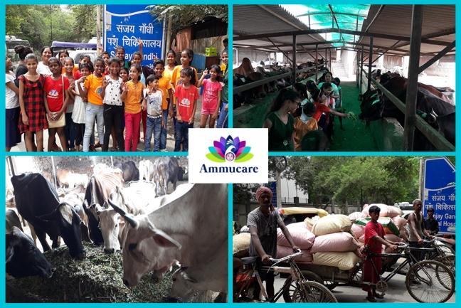 Mohanji ka Aangan - Delhi - visiting Sanjay Gandhi animal centre-Guru Purnima 2019
