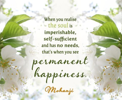 mohanji-soul-is-imperishable