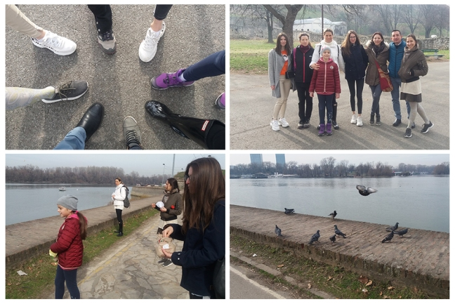 Belgrade Conscious Walking, feeding birds and fish, Mohanji's birthday 2020