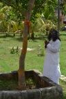 mohanjichronicles-Gopal Krishna Baba - Mohanji Visiting Audumbar Tree